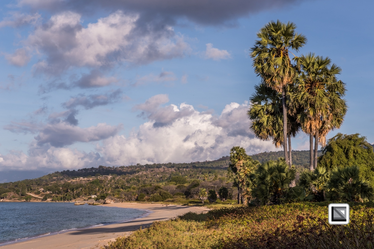 Timor-Leste-642