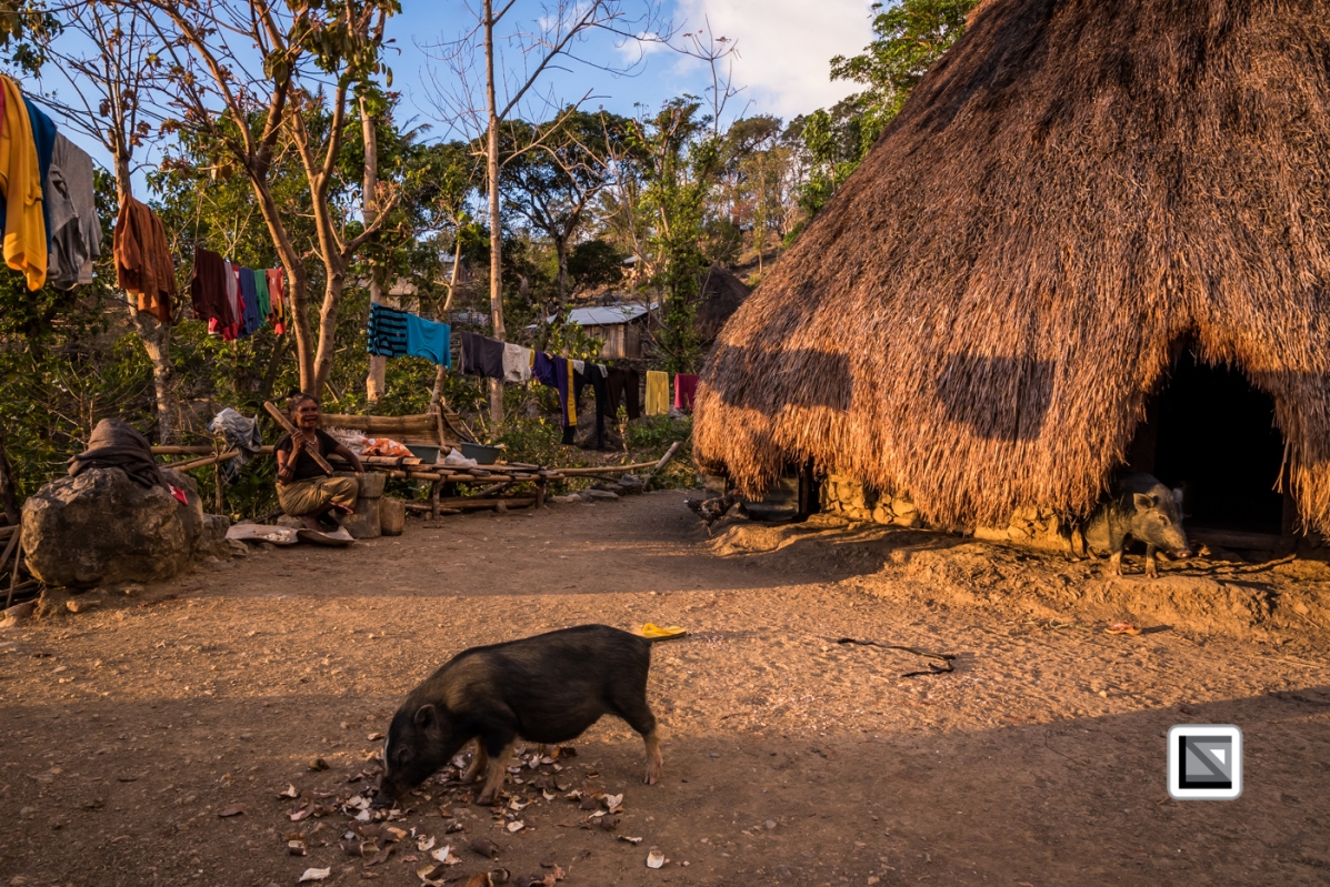 Timor-Leste-67