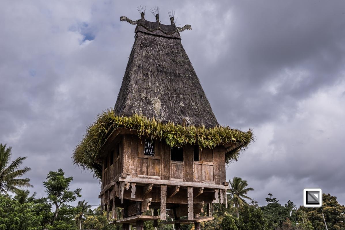Timor-Leste-729