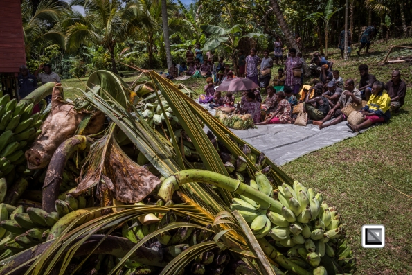 PNG-East_New_Britain-Tabu-Shell_Money-1029
