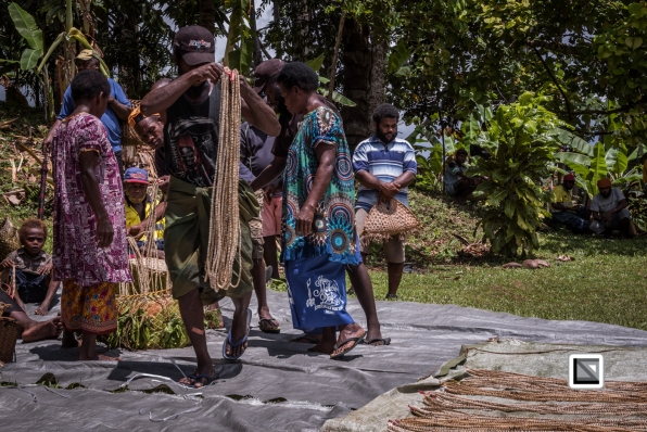 PNG-East_New_Britain-Tabu-Shell_Money-1061