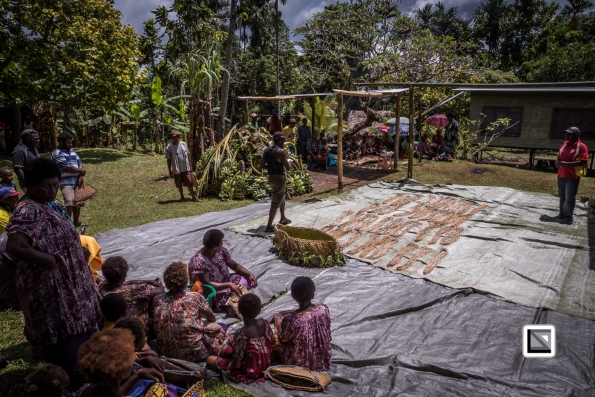 PNG-East_New_Britain-Tabu-Shell_Money-1073
