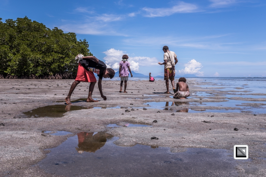 PNG-East_New_Britain-Tabu-Shell_Money-303