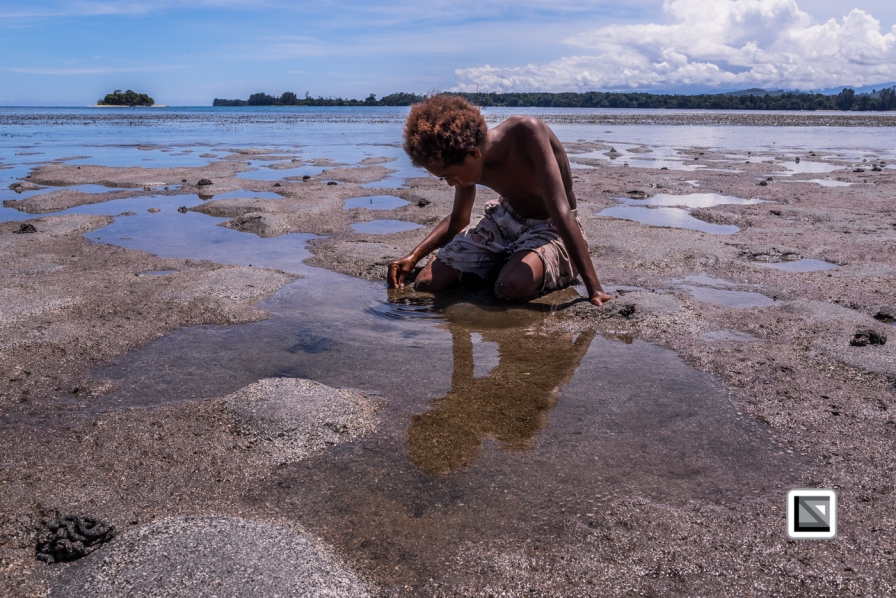 PNG-East_New_Britain-Tabu-Shell_Money-313