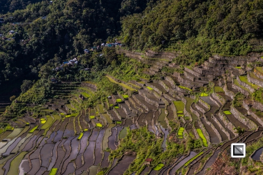 Philippines-Banaue_Rice_Terraces-114