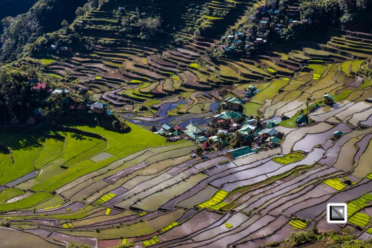 Philippines-Banaue_Rice_Terraces-116