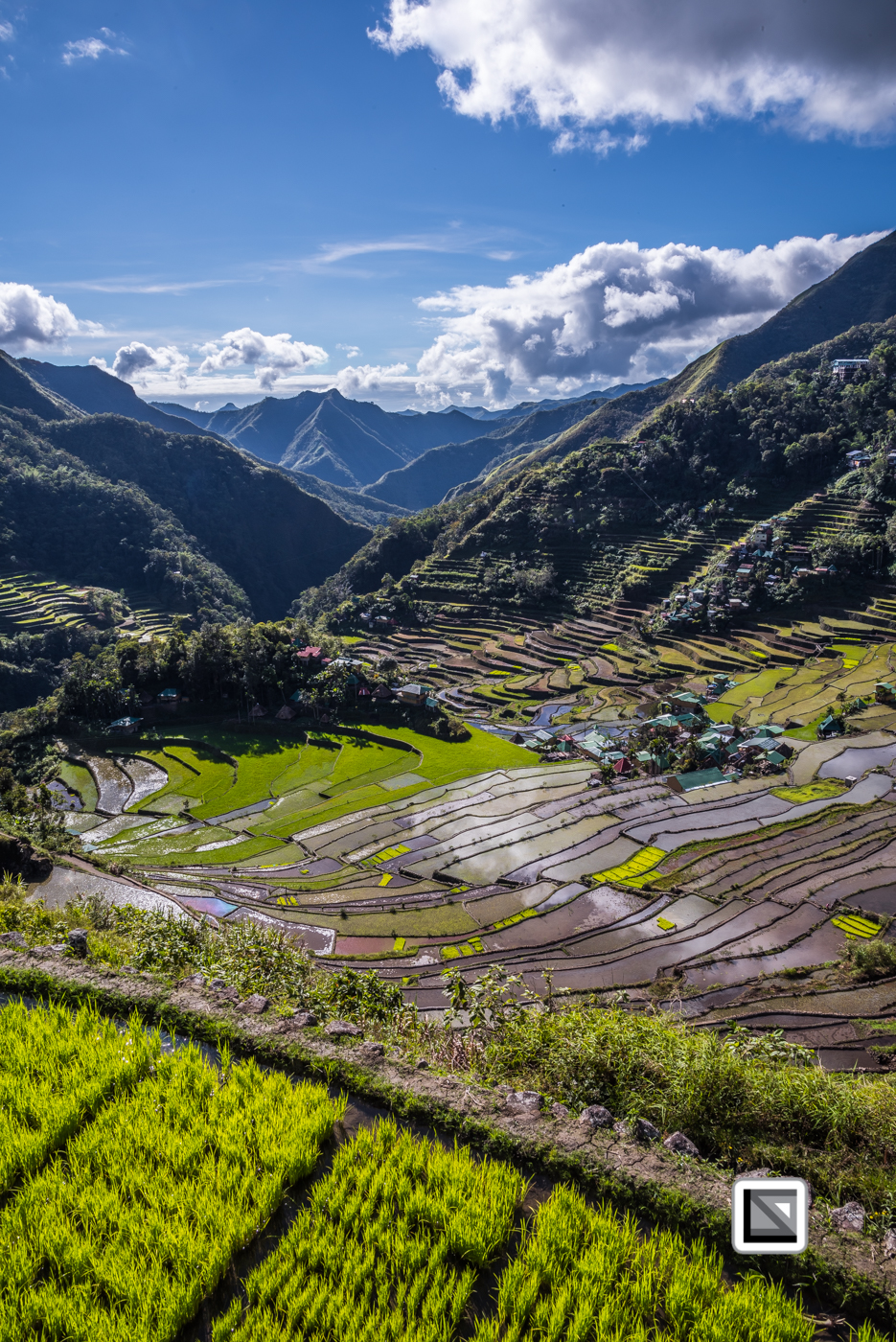 Philippines-Banaue_Rice_Terraces-145