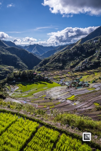 Philippines-Banaue_Rice_Terraces-145