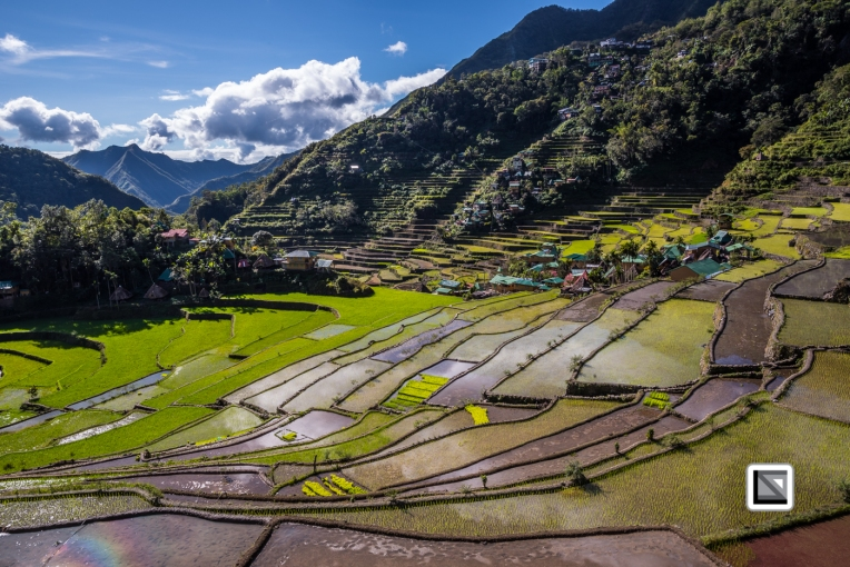 Philippines-Banaue_Rice_Terraces-162