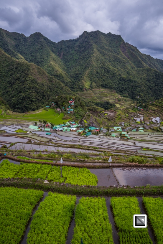 Philippines-Banaue_Rice_Terraces-44