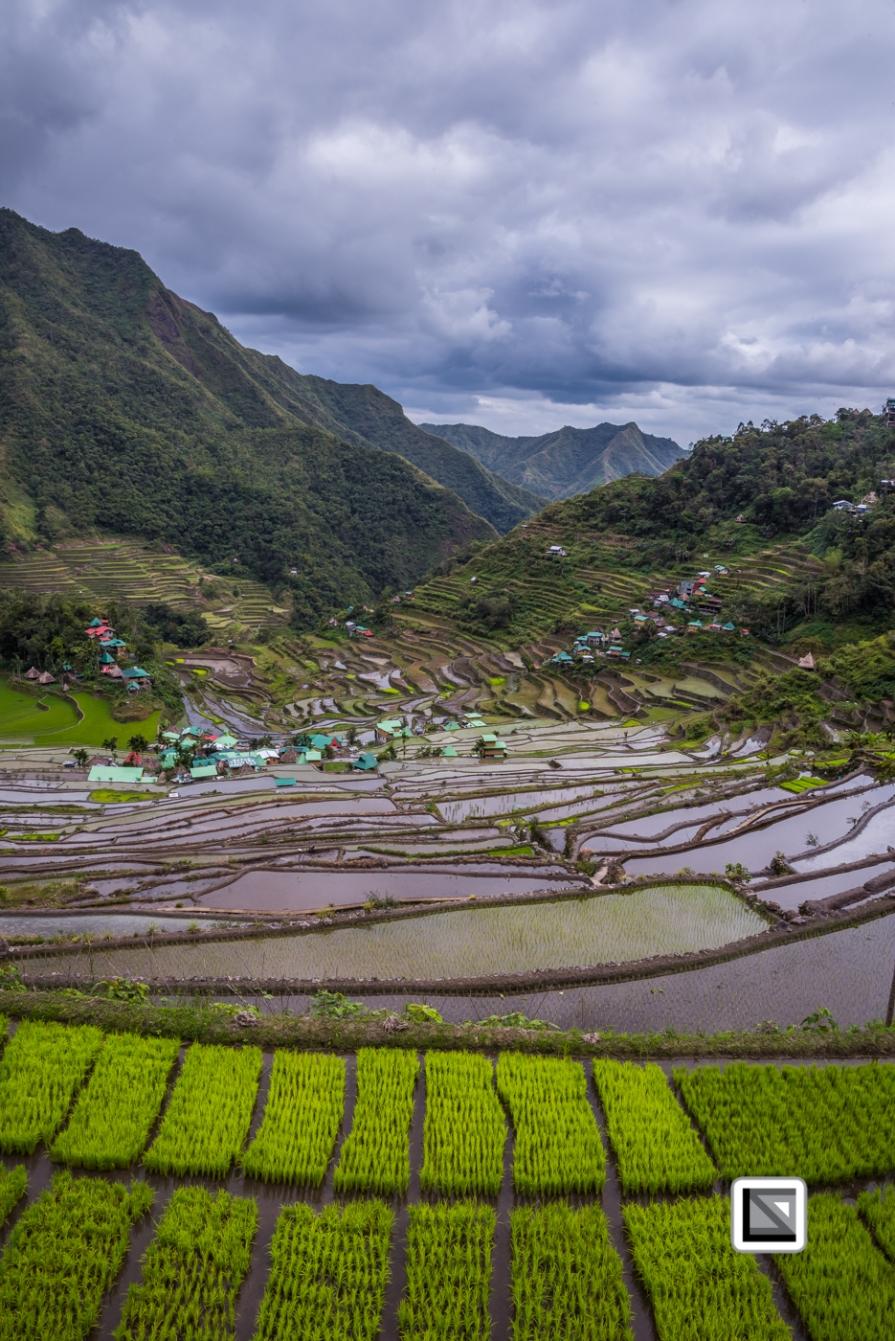 Philippines-Banaue_Rice_Terraces-45