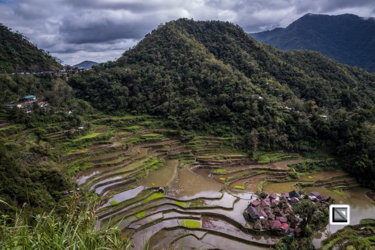 Philippines-Banaue_Rice_Terraces-7