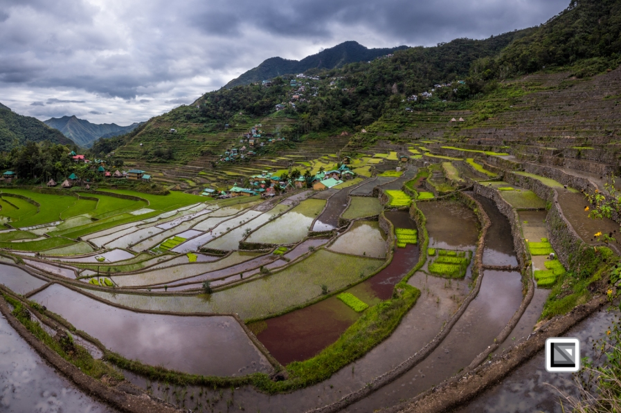 Philippines-Banaue_Rice_Terraces-75