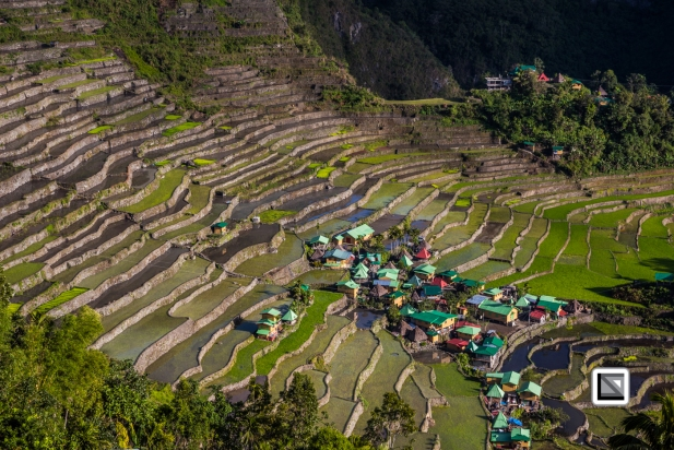 Philippines-Banaue_Rice_Terraces-78