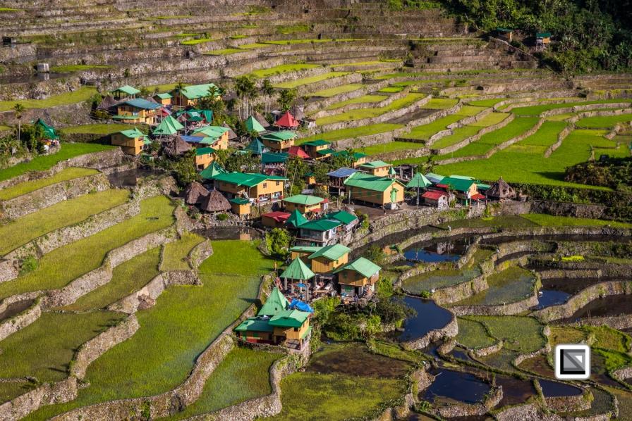 Philippines-Banaue_Rice_Terraces-86