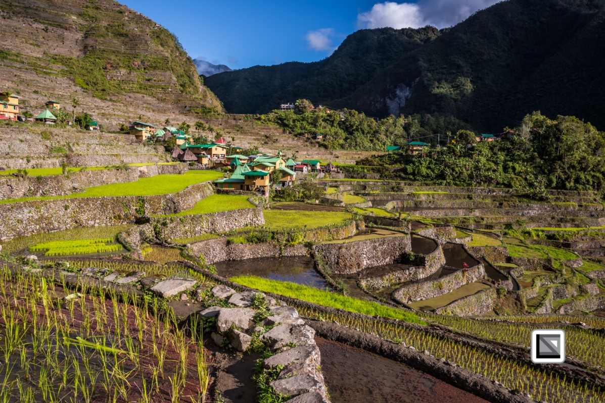 Philippines-Banaue_Rice_Terraces-87