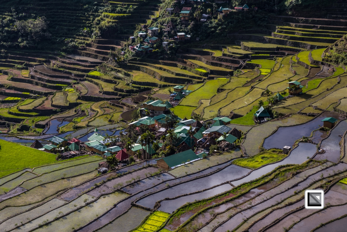 Philippines-Banaue_Rice_Terraces-90