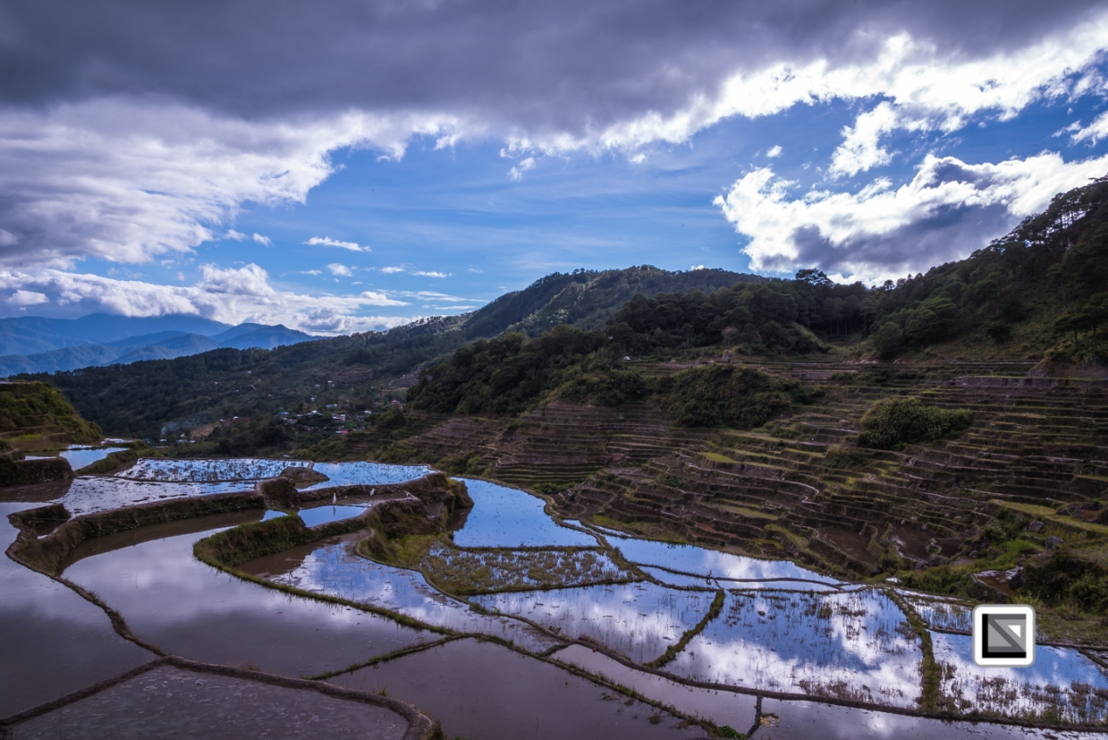 Philippines-Malingcon_Rice_Terraces-1