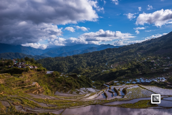 Philippines-Malingcon_Rice_Terraces-10