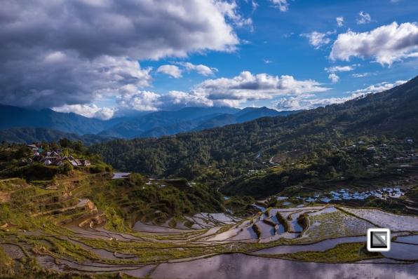 Philippines-Malingcon_Rice_Terraces-10