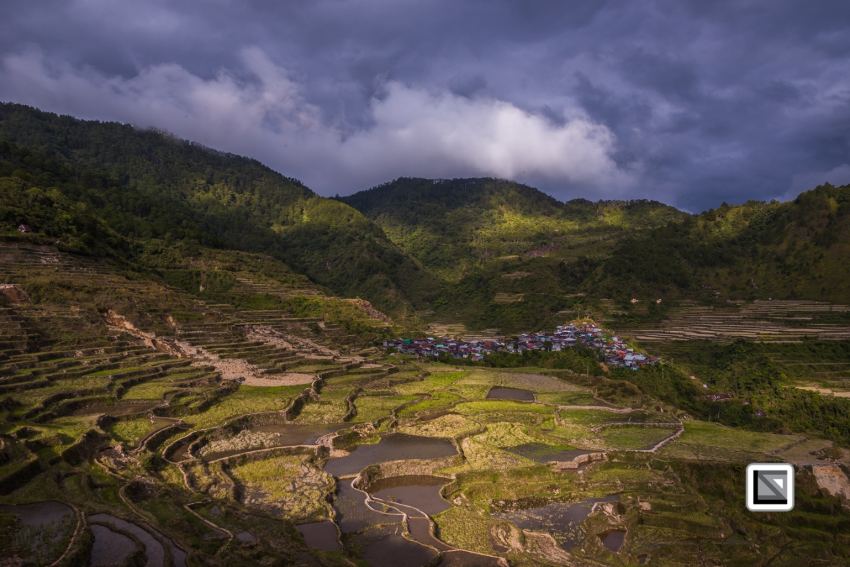 Philippines-Malingcon_Rice_Terraces-13