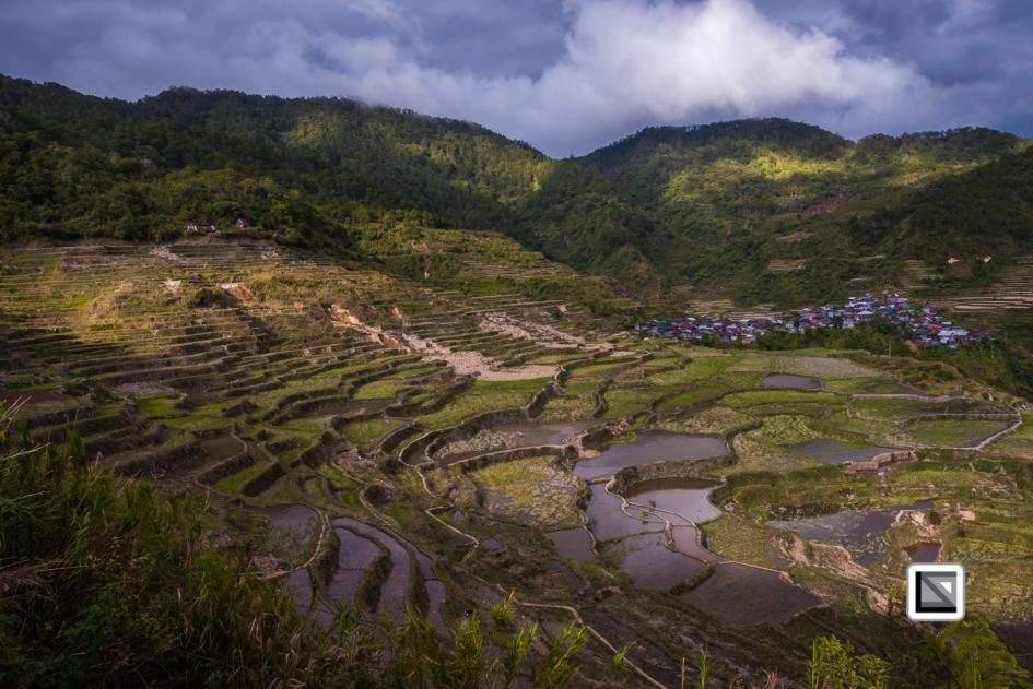 Philippines-Malingcon_Rice_Terraces-14