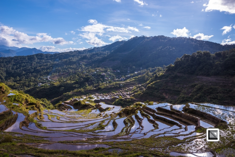 Philippines-Malingcon_Rice_Terraces-16
