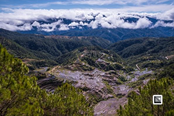 Philippines-Malingcon_Rice_Terraces-17