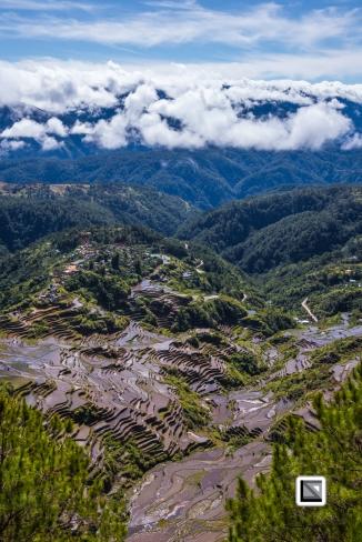 Philippines-Malingcon_Rice_Terraces-21