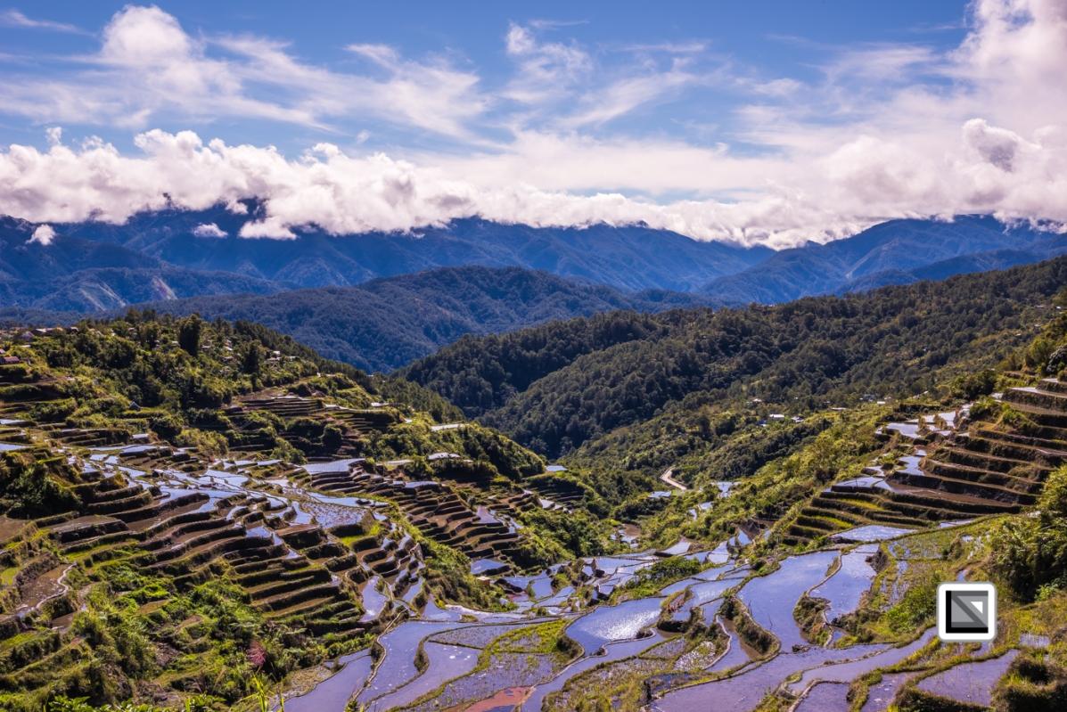 Philippines-Malingcon_Rice_Terraces-25