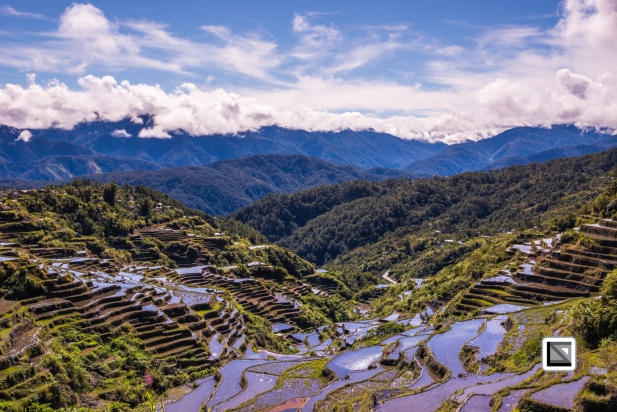 Philippines-Malingcon_Rice_Terraces-25
