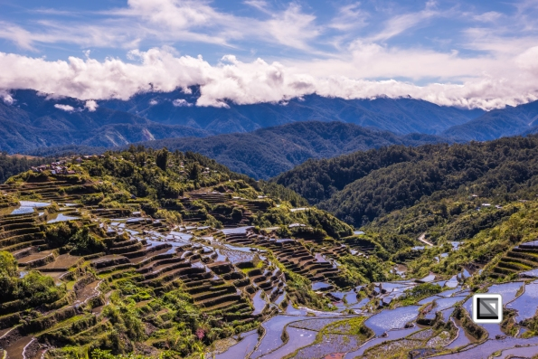 Philippines-Malingcon_Rice_Terraces-28