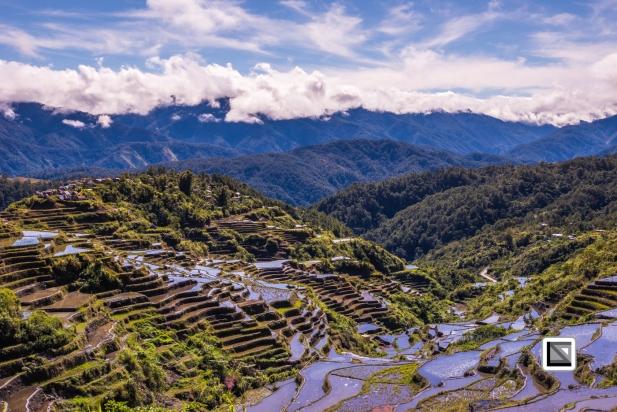 Philippines-Malingcon_Rice_Terraces-28