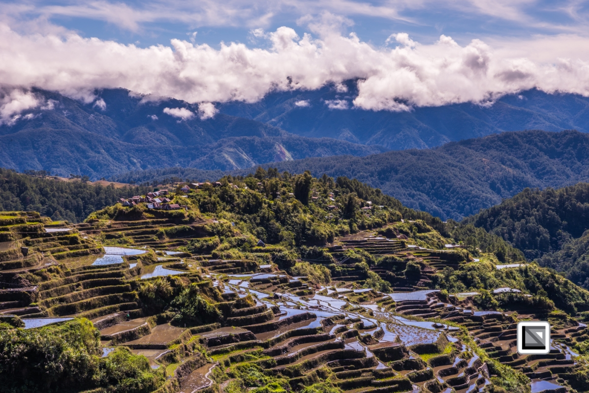 Philippines-Malingcon_Rice_Terraces-29