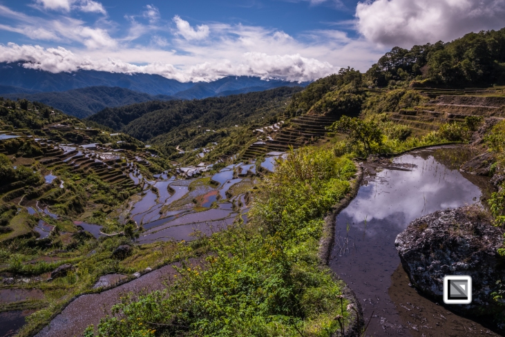Philippines-Malingcon_Rice_Terraces-33