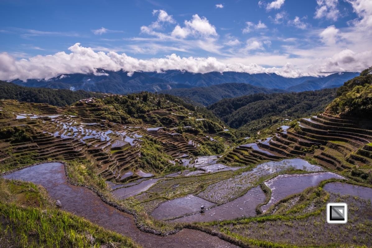 Philippines-Malingcon_Rice_Terraces-35