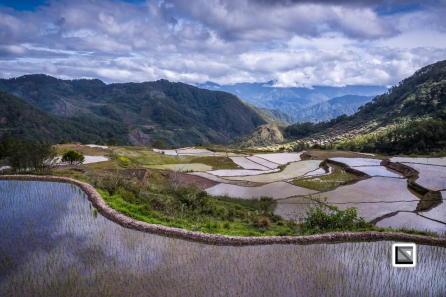 Philippines-Sagada-Aguid_Rice_Terraces-25