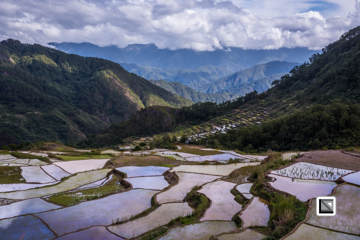 Philippines-Sagada-Aguid_Rice_Terraces-37