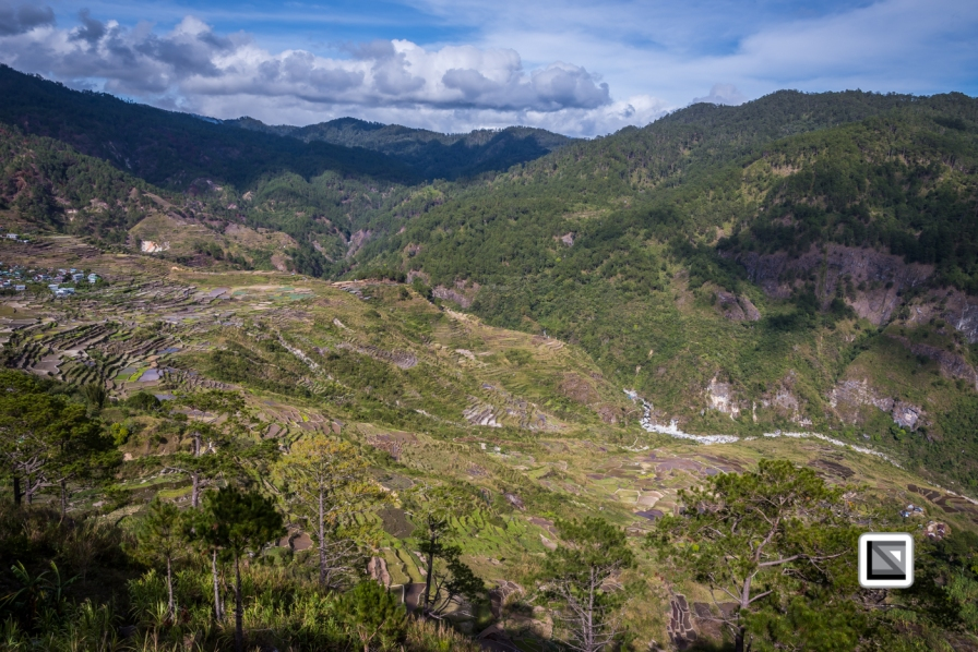 Philippines-Sagada-Aguid_Rice_Terraces-77